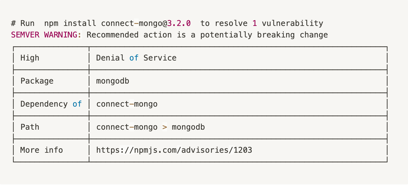 Vulnerability advisory summary from npm audit